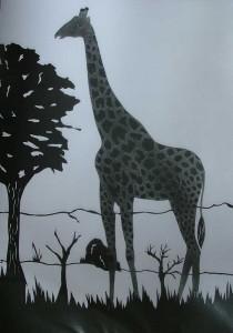2002-011 Giraffe