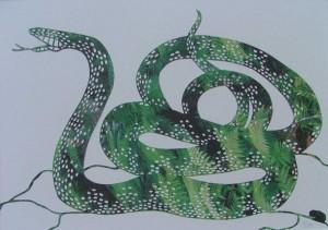 2004-005  Schlange