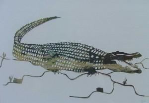 2004-009  Krokodil