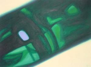 2004-015 Licht